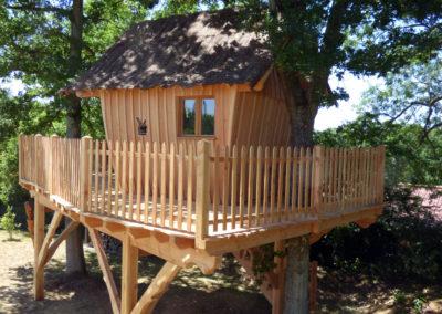 cabane-bois-ecureuil-normandieP1030797